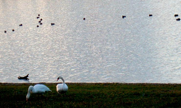 Озеро Барбора, знаменитый курорт Теплице, Чехия